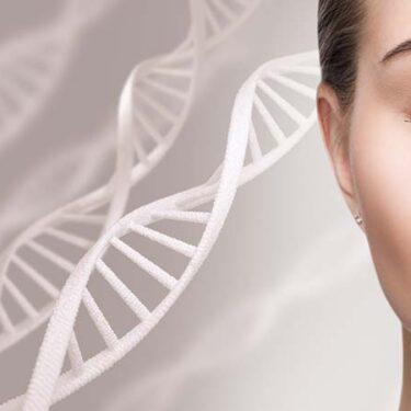 Stem Cells in Skin Care
