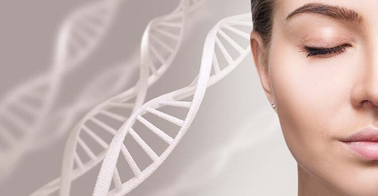 Stem Cells in Skin Care: Do Stem Cells Repair Your Skin?