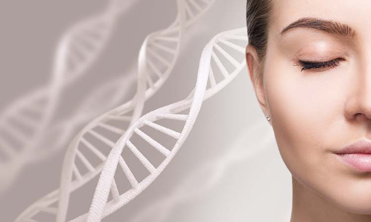 Stem Cells in Skin Care: Do Stem Cells Repair Your Skin?