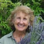 Dr. Cindy Jones